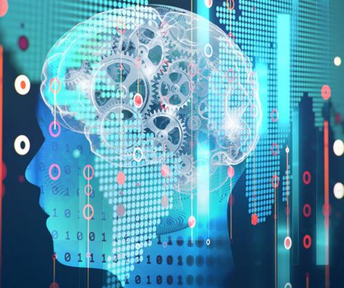 Alguns princípios para pensar a governança  de algoritmos